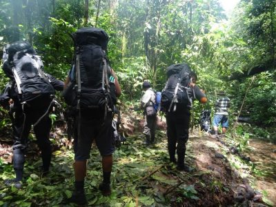Patrolling rainforest in Sumatra Indonesia to protect against illegal poaching and logging