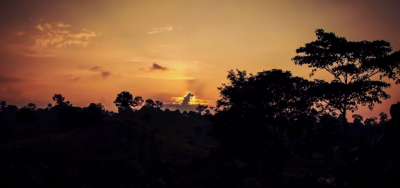 sunset in Sumatran rainforest