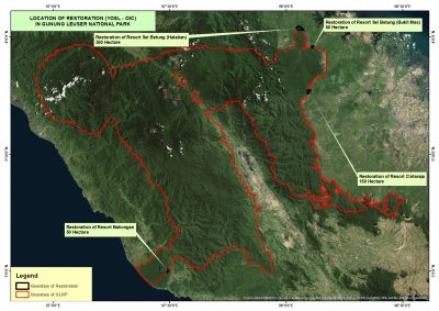 Reforestation sites in Gunubng Leuser National Park