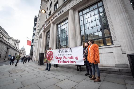 Three people stand on a street holding a protest banner which says 'Stop Funding Extinction'