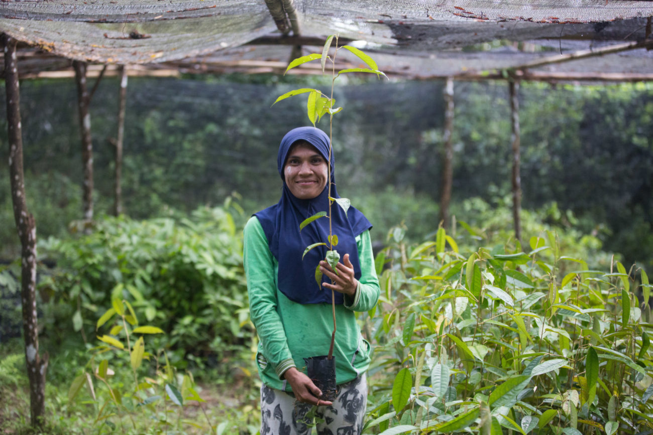 A woman stands surrounded by tree seedlings and holding a tree seedling in her hands. She is smiling.